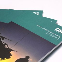DSG Annual Report Corporate Print by Ouno Creative